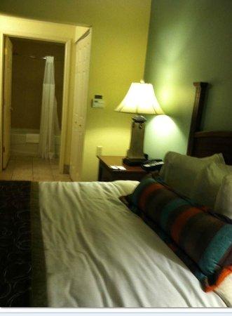 Staybridge Suites Tallahassee I-10 East: Room 311