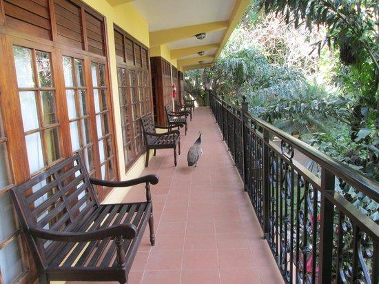 Jewel Dunn's River Beach Resort & Spa, Ocho Rios,Curio Collection by Hilton: Lanai balcony