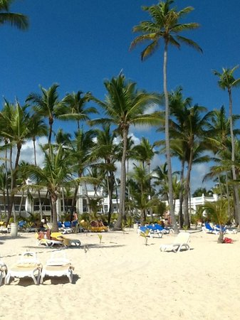 Hotel Riu Palace Bavaro: looking toward the resort from the beach