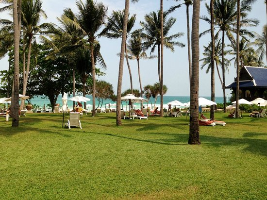 Centara Grand Beach Resort Samui : grounds