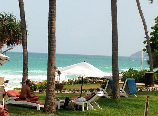 Centara Grand Beach Resort Samui : Grounds