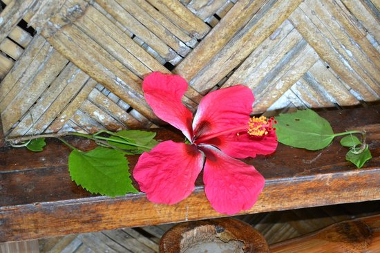 Coco Beach Resort: Gastfreundlichkeit