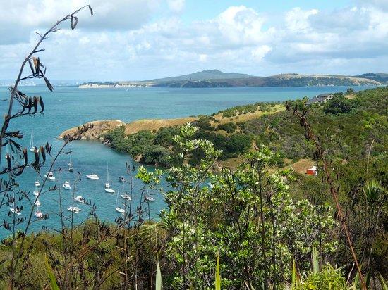 Waiheke Island, Nya Zeeland: Some of the beautiful scenery of Waiheke