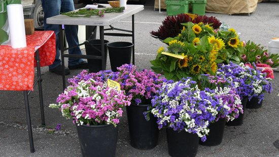 Adelaide Farmers' Market: these colorful bouquet make my day