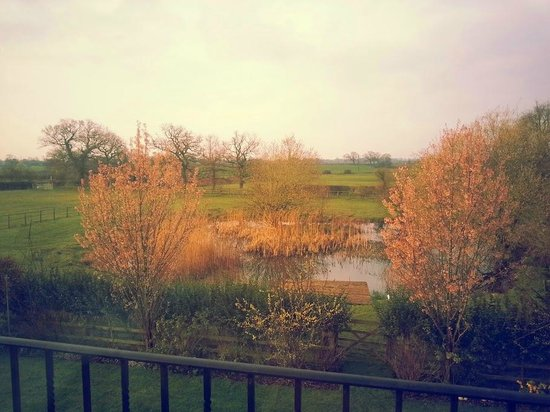 Moss Farm: Lake view from room