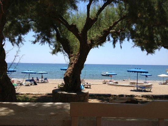 Elvita : Stranden lige neden for hotellet