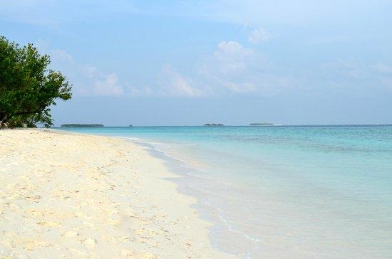 Kuredu Island Resort & Spa: Beach in front of our villa
