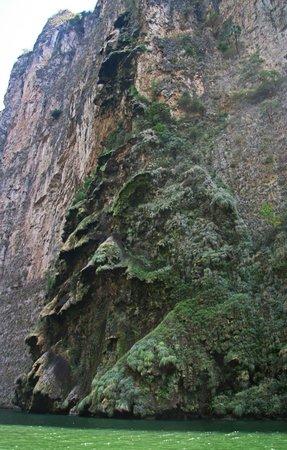 Cañón del Sumidero: Christmas Tree