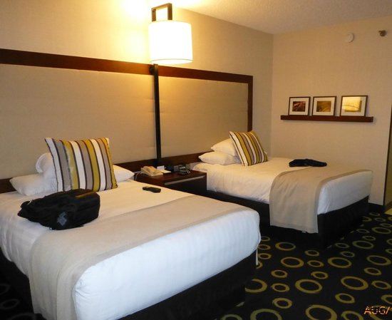 Hyatt Regency Morristown: Nice Comfy bed