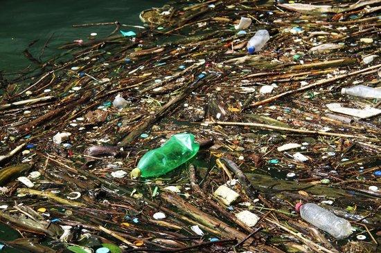Cañón del Sumidero: Pollution