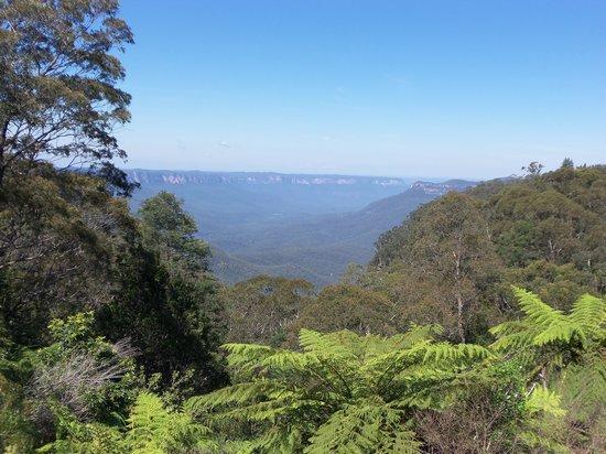 Activity Tours Australia : Jamison Valley