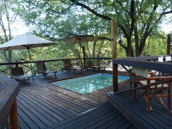 Mankwe Bush Lodge: Piscina