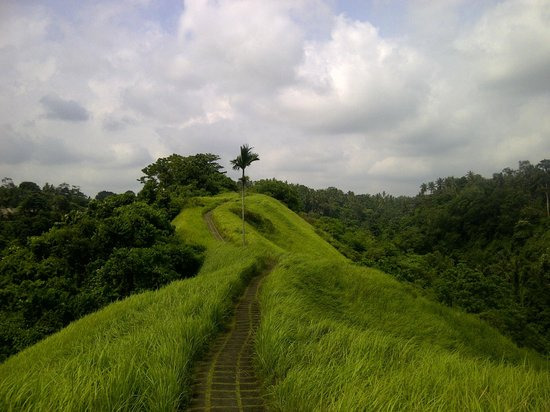 Hillside trails near the resort - This photo of The Lokha Ubud, Bali is courtesy of TripAdvisor