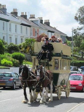 The Lizard Stallions Shire Experience Days: Falmouth Events