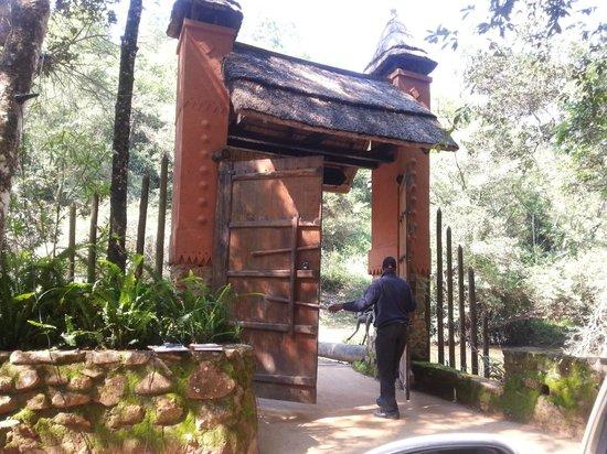 Timamoon : Entrance