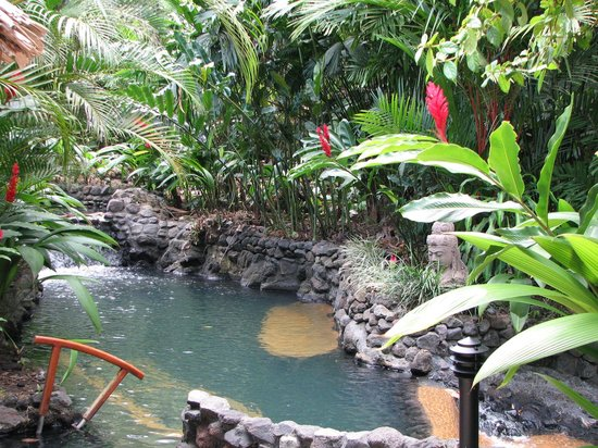 Tabacon Grand Spa Thermal Resort : Paradise like hot springs