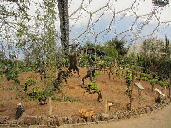 Eden Project: Inside the Medditeranean Biome