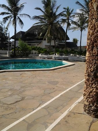 Barracuda Inn: piscina