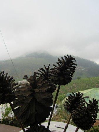 Misty Mountain Villas: Туманные горы
