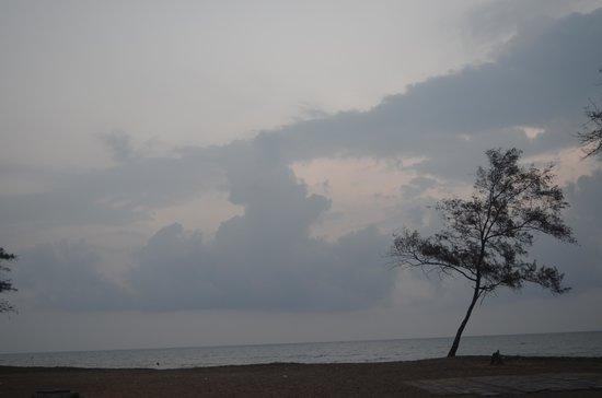 TTDC Hotel Mamallapuram : View from the room