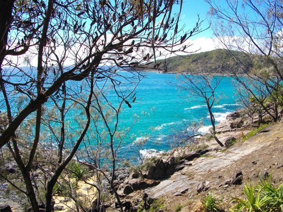 Noosa National Park: one of many bays