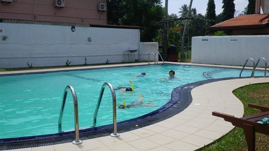 Green View Hotel Katunayake: Hotel pool - just what was needed