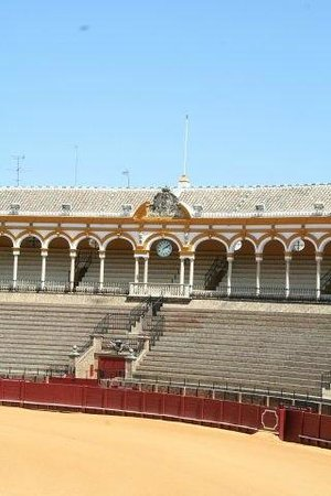 Plaza de Toros de la Maestranza: отсюда выходят торрерос