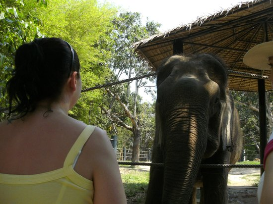 Anantara Hua Hin Resort : Wildlife Friends Foundation