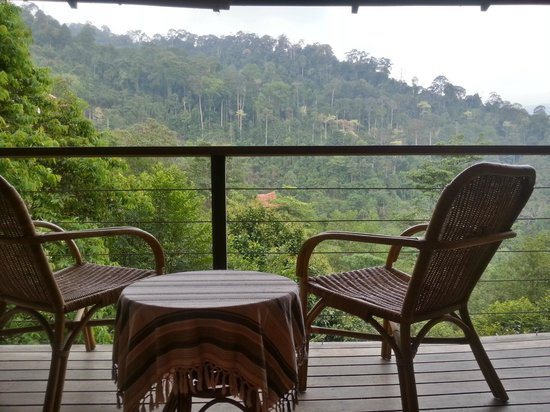 Awanmulan: enjoy a coffee or tea while looking out at the beautiful nature