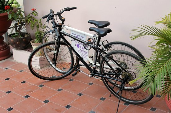 Murray Guesthouse : Bicycle fleet for guests