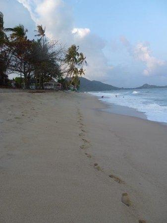 Samui Beach Resort: beach samui resort