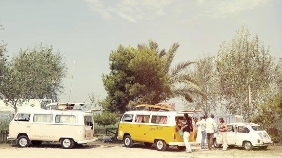 Vintage Tours Day Tours : Caravana Vintage