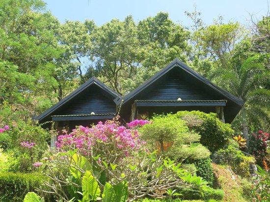 Boomerang Village Resort : Hotel rooms
