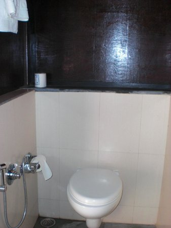 Infinity Resort Bandhavgarh: toilet