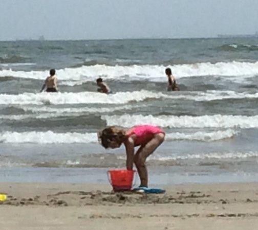 The Seawall : Fun at the beach