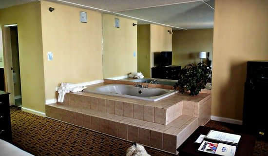 Clarion Hotel Conference Center South: whirlpool room
