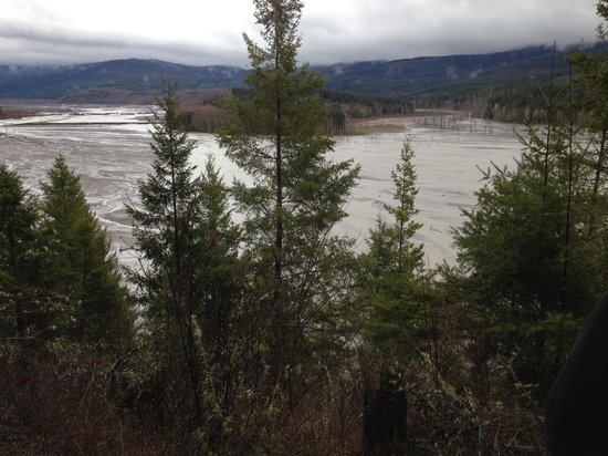 Toutle, WA: Effects of sediment retention dam