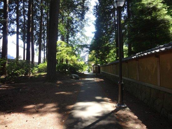 Nitobe Memorial Garden: 庭園の外の道