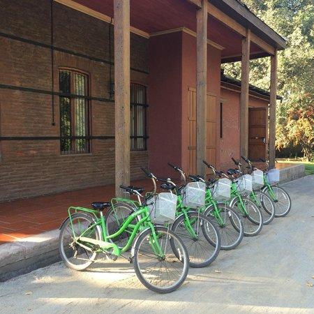 La Bicicleta Verde : Bikes
