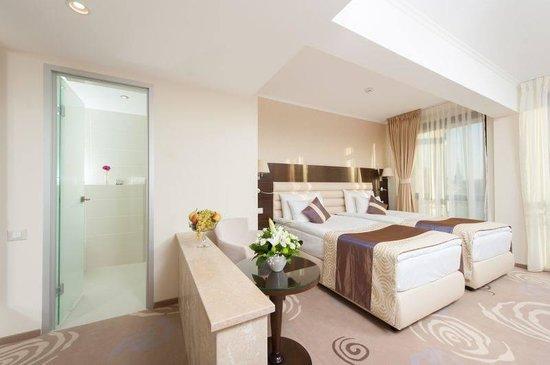 Hotel Coroana De Aur : Business Twin Room