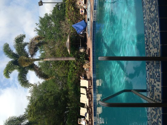 DoubleTree by Hilton Hotel Deerfield Beach - Boca Raton: The pool with a view of the jacuzzi