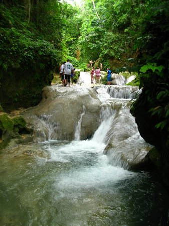 Island Gully Falls: Above the main waterfall - don't miss!