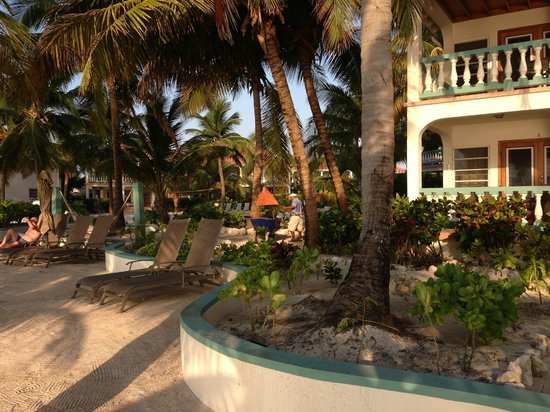 Belizean Shores Resort: view from the beach