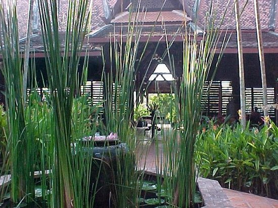 Angkor Village Resort: le jardin