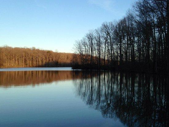 Burke Lake Park : Burke Lake in Early Spring