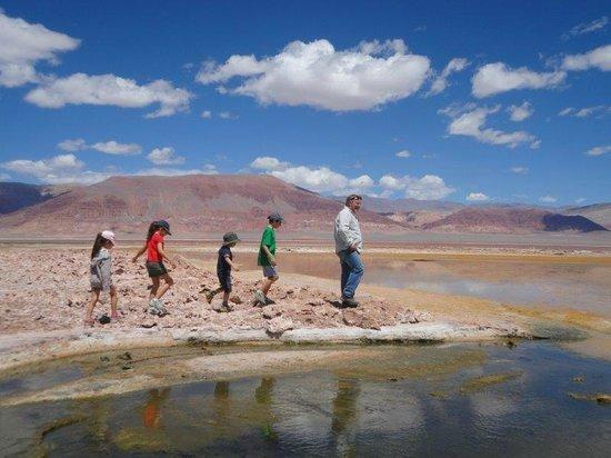 Hosteria Incahuasi: Lagunas altiplanicas
