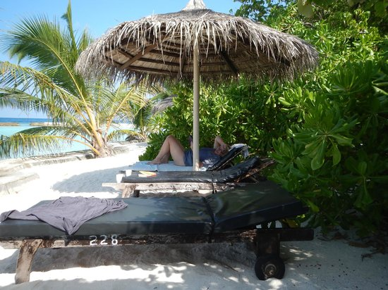 Ellaidhoo Maldives by Cinnamon : Lying about the place!