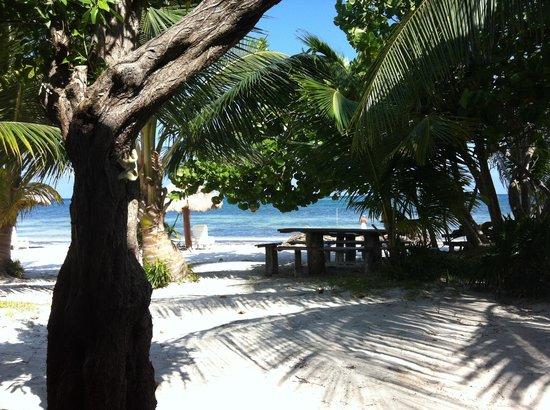 Hotel Maya Luna: a beachy life