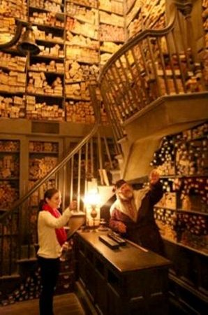 The Wizarding World of Harry Potter: The Wand Shop, where the wand picks the buyer
