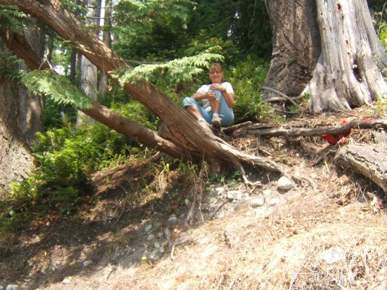 Willingdon Beach Trail : enjoying the nature sitting in a tree